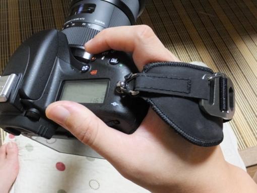 DSCF5008.jpg