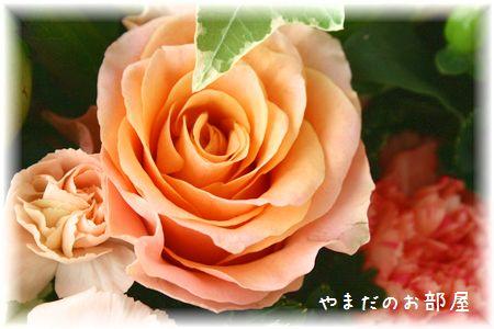 2015年ナオミの命日のお花②