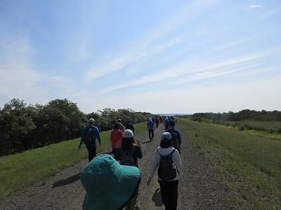 湿原ウォークコース1