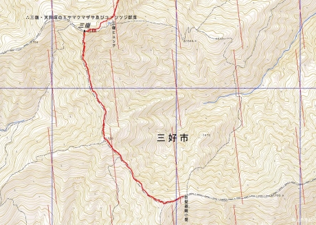 剣山三嶺21日1