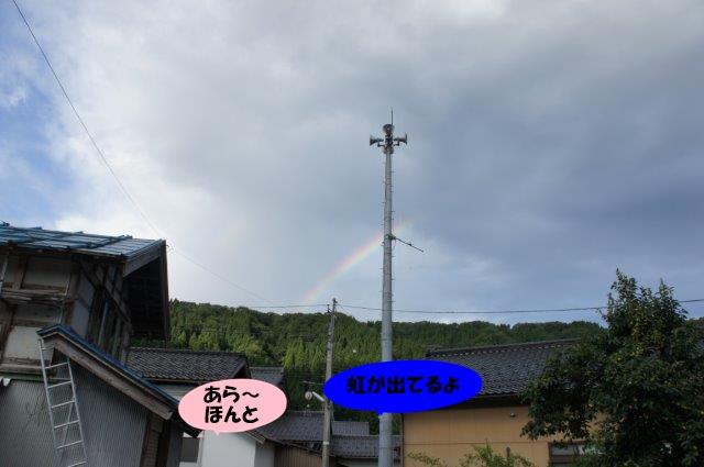DSC07382.jpg