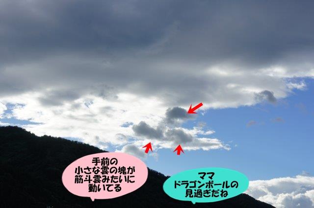 DSC07388.jpg