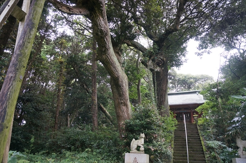3玉沢稲荷神社
