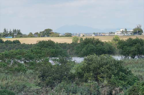 8利根川と筑波山