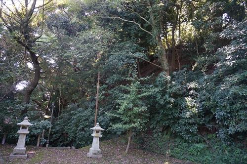 4不動堂の森