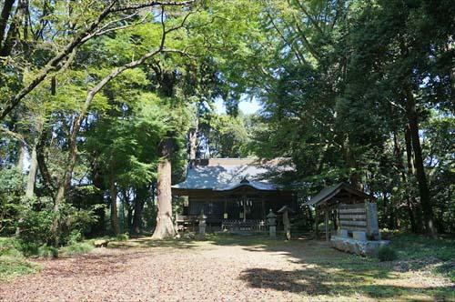 3神社の森