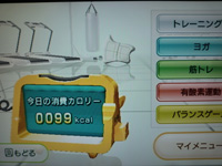 Wii Fit Plus 2015年09月11日のトレーニングのカロリー 99kcal