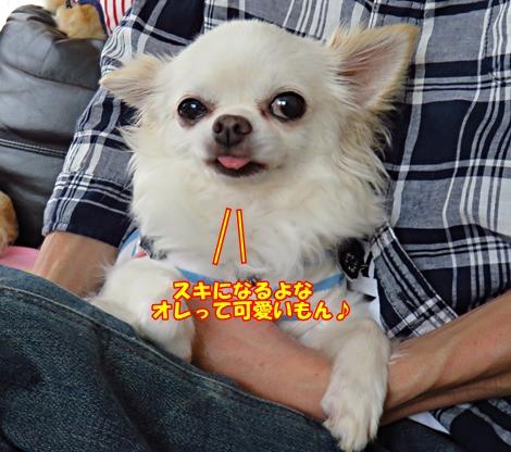 sx700IMG_6461.jpg