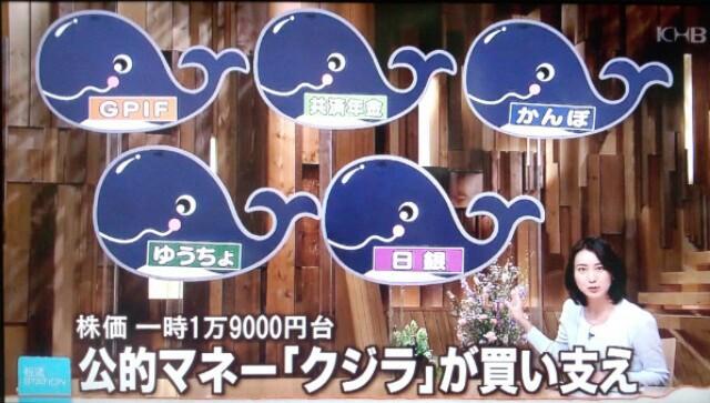 報道ステーション 5つのクジラ