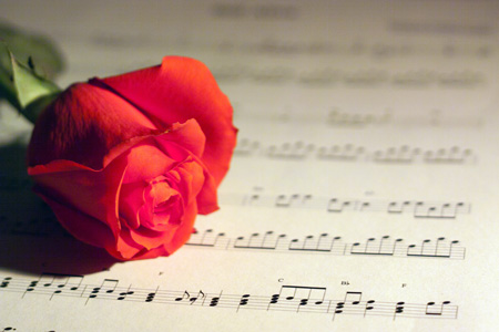 stockvault-rose-and-music14.jpg
