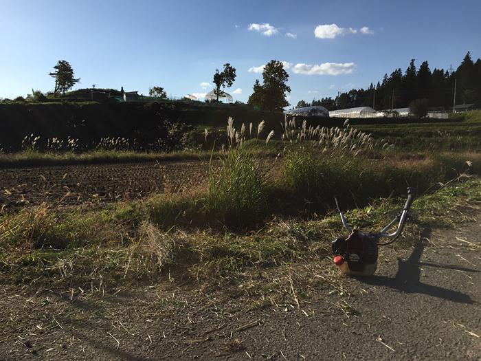 農作業 2015 秋 草刈り