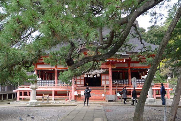 出雲の神社巡り  日御碕神社  11