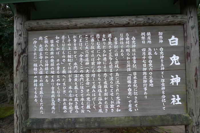 因幡の神社  白兔神社  11
