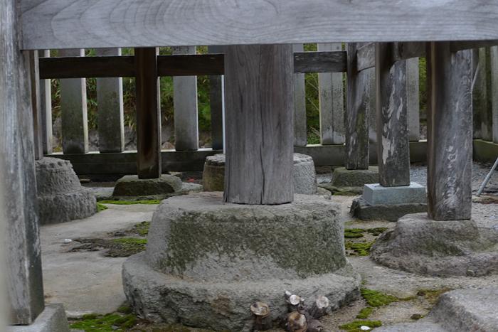因幡の神社  白兔神社  14