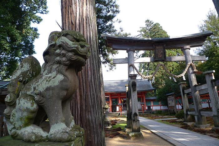 但馬の神社  出石神社  3