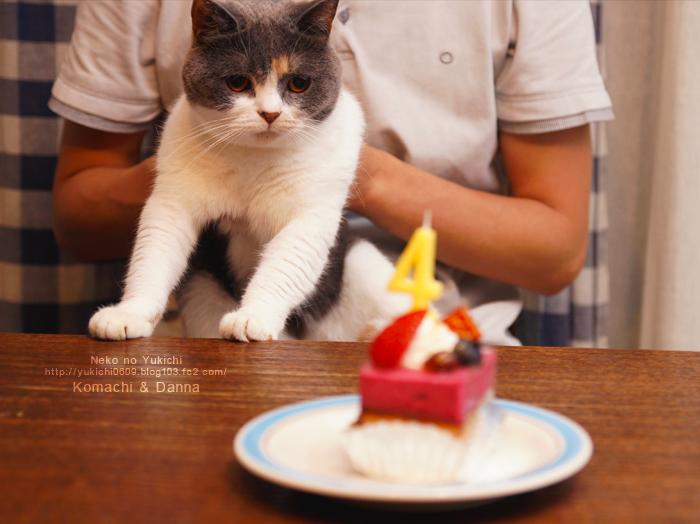 こまち&だんな&ケーキ