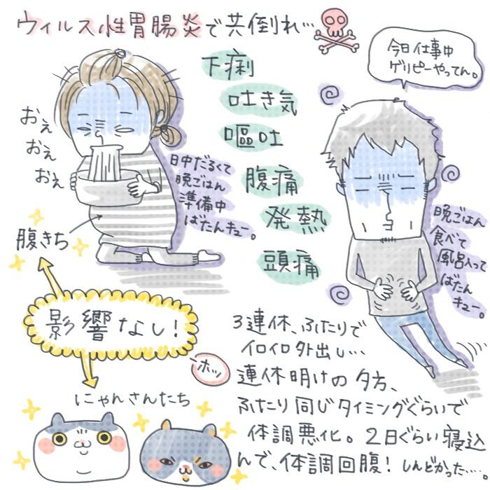 ウイルス性胃腸炎と猫と腹きち