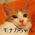 001-PB109091_convert_20101113232634[1]