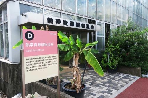DPP_391-2.jpg