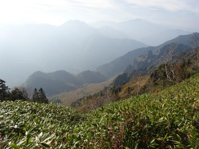 10月10日 クリヤ谷中腹の笹区間