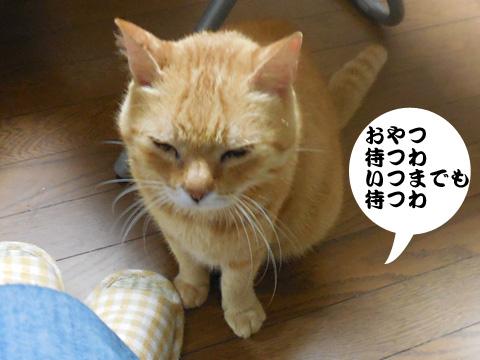 15_08_21_3.jpg