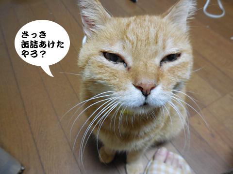 15_08_25_1.jpg