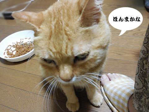 15_08_25_2.jpg