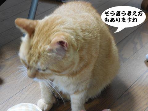 15_08_29_3.jpg