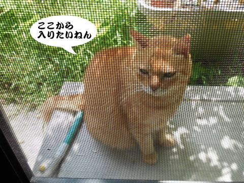 15_09_05_2.jpg