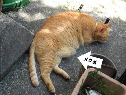 15_09_12_2.jpg