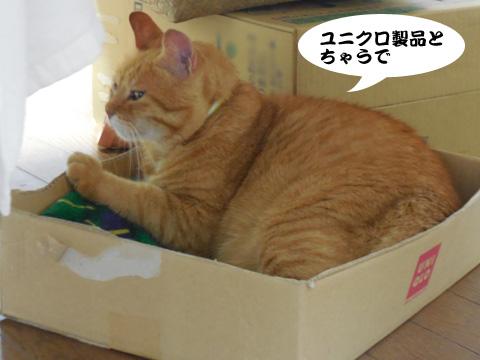 15_09_12_3.jpg