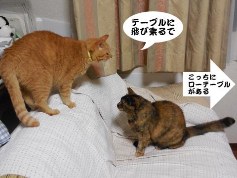 15_09_24_1.jpg