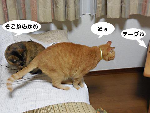 15_09_24_5.jpg