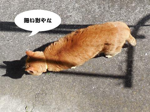 15_10_09_1.jpg