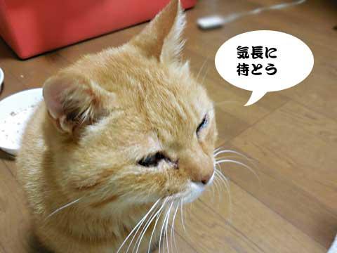 15_10_15_4.jpg