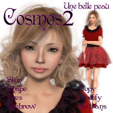 Cosmos2 460 skin panel