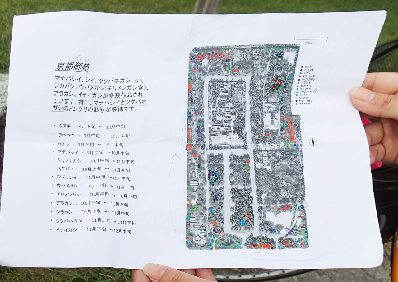chizu_609b.jpg