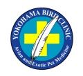 横浜小鳥の病院ブログ