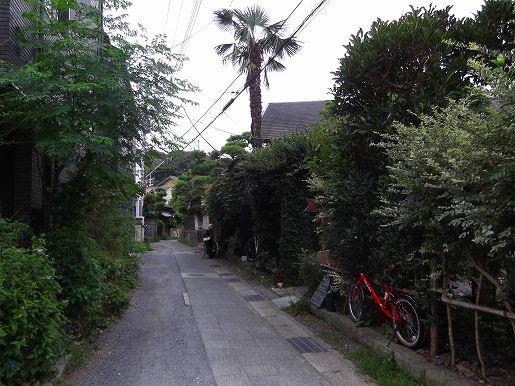 2015_08_24_1192.jpg