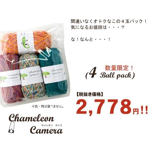 914ピエロカメレオンカメラ福袋