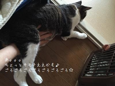 マッサージ銀①