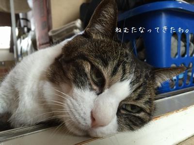 マッサージ銀②
