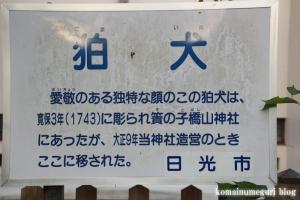 足尾銅山53