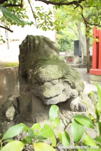 富岡八幡宮25