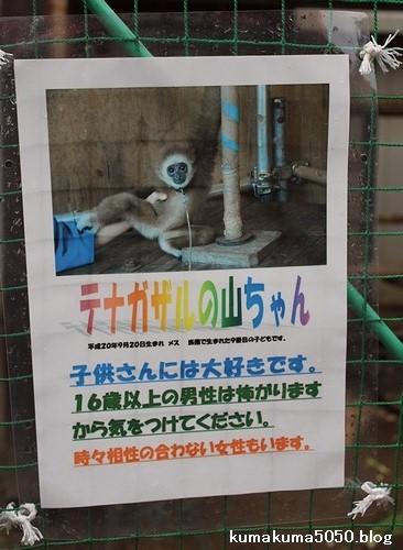 福知山市動物園_7