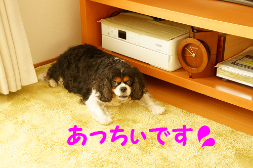 201509291417430b6.png