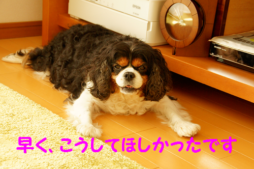 20150929141745833.png