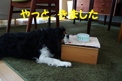 201510201400251ae.png