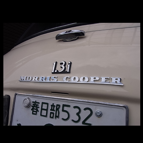 tatu1248.jpg