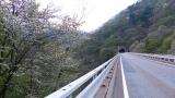 20150429中津川馬籠400
